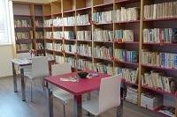 Knihovna online
